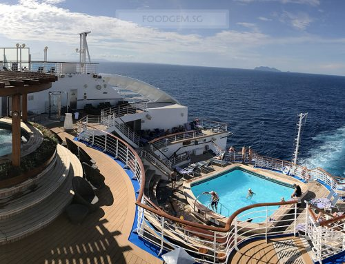 Princess Cruises | How Do I Survive With Limited Internet for 4D3N